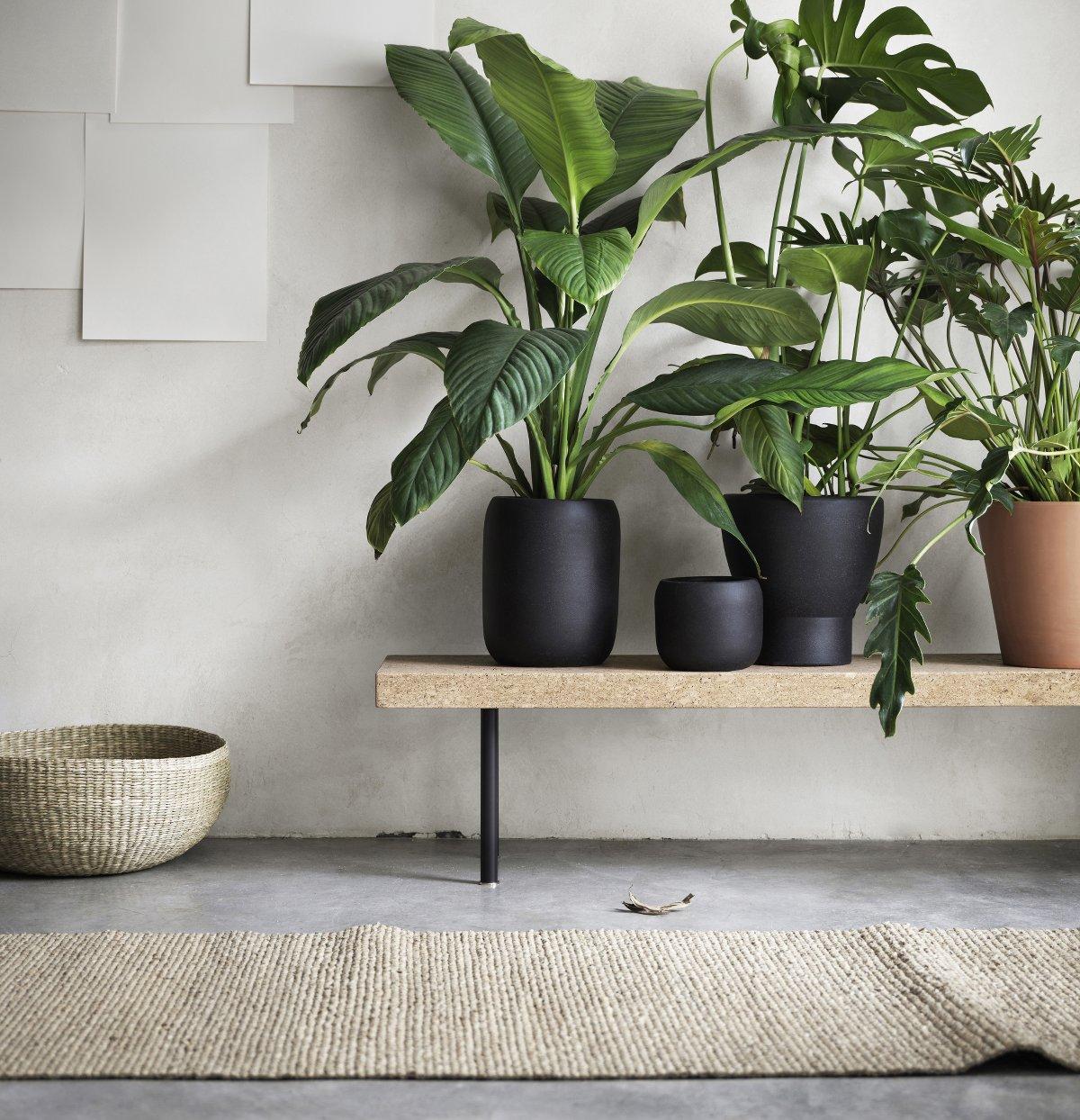 Ikea Sinnerlig Collection – Bank, Übertöpfe, Korb, Teppich